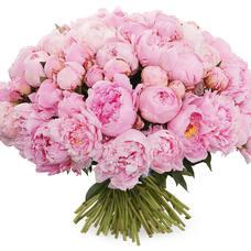 Купить букет пионов розовые в москве недорого — photo 10